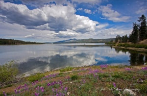Big Bear Spring