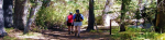 hiking-header.png