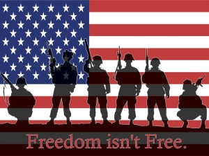 support-our-troops-freedom-isnt-free