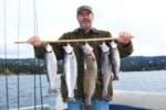 excellent-trout